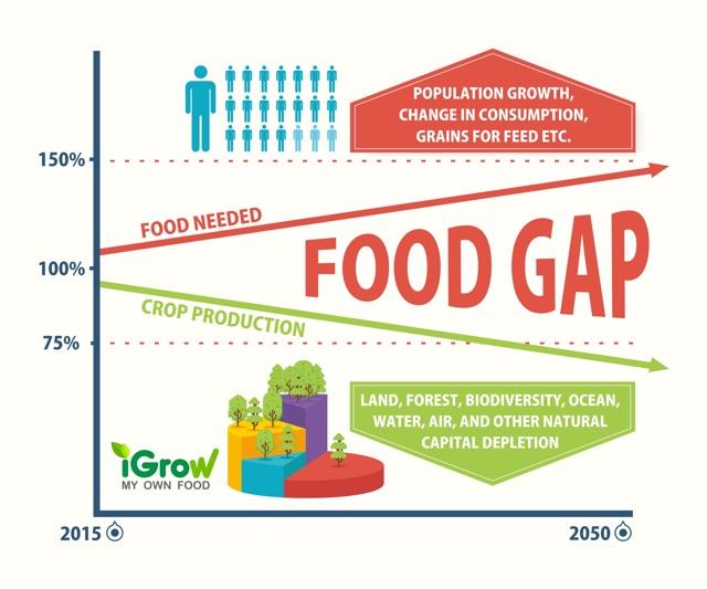 food gap
