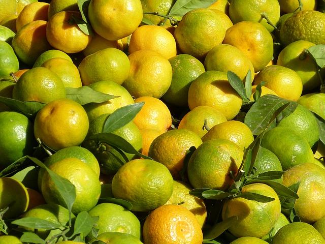 jeruk keprok