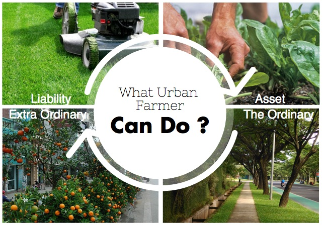 urban_farmer_can_do